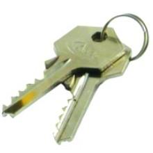 Asec Padlock Master Key